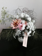 Anise, Dill, Queen Anne's Lace, Zinnia