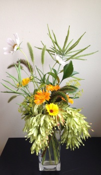 Cosmos, Calendula, Pitt, Ruskus, Amaranthus, Sumach, Dill