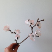 Paper Cherry Blossom